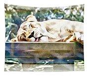 Sleeping Kittykat Tapestry