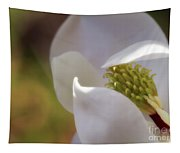Sleeping Magnolia Tapestry