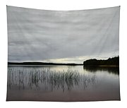 Thin Rain In The Evening Tapestry