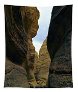 Slot Canyon Within The Tent Rocks Tapestry