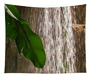 Slow Motion Tropical Waterfall Tapestry