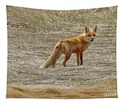 Sly Fox 5785 Tapestry
