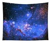 Small Magellanic Cloud Tapestry