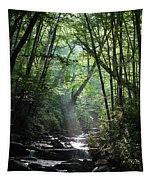 Smoky Tapestry