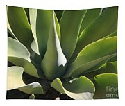 Smooth Agave Tapestry