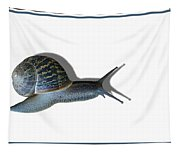 Snail Mail Tapestry