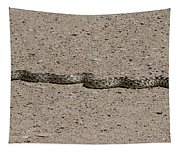 Snake On The Road Tapestry