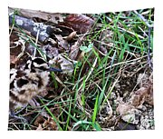 Snipe In Camouflage Tapestry