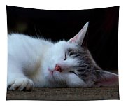 Snooze Tapestry