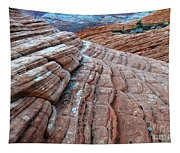Snow Canyon Utah 2 Tapestry