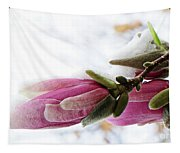 Snow Capped Magnolia Blossoms Tapestry