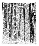 Snow In A Forest Tapestry