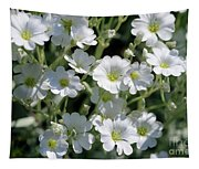 Snow In Summer Flowers Tapestry