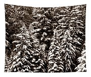 Snow-laden Forest Tapestry
