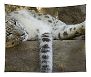 Snow Leopard Nap Tapestry