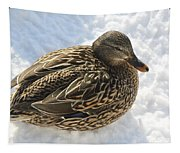 Snow Mallard Tapestry