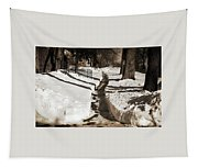 Snow Paths And Winter Shadows Tapestry