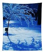 Snow Shadows Tapestry