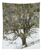 Snow Tree  Tapestry