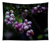 Snowberry 5191 H_2 Tapestry