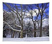Snowman In Central Park Nyc Tapestry