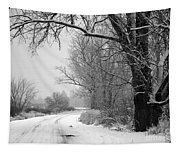 Snowy Branch Over Country Road - Black And White Tapestry