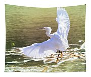 Snowy Egret Over Golden Pond Tapestry