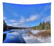 Snowy Shore Of The Moose River Tapestry