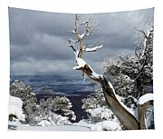 Snowy View Tapestry