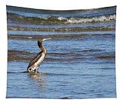 Socotra Cormorant Tapestry