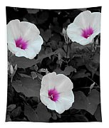 Soft Contrast Tapestry