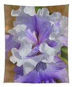 Soft Iris Tapestry