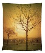 Soft Light In Summerland Tapestry