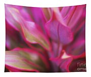 Soft Red Ti Tapestry