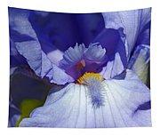 Softly Purple Tapestry