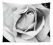 Softness Unfolding Tapestry