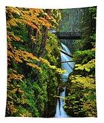Sol Duc Falls In Autumn Tapestry