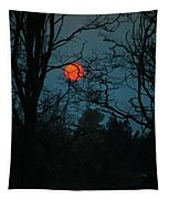 Solar Disguise Tapestry