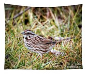 Song Sparrow Sweetie Tapestry