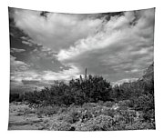 Sonoran Afternoon H10 Tapestry