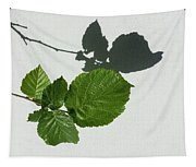 Sophisticated Shadows - Glossy Hazelnut Leaves On White Stucco - Horizontal View Left Down Tapestry