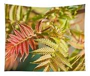 Sorbaria Sorbifolia Spring Foliage Tapestry