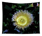 South African Flower 1 Tapestry