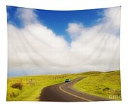 South Kohala Tapestry