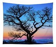 South Rim Tree Tapestry