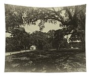 Southern Plantation Path Tapestry