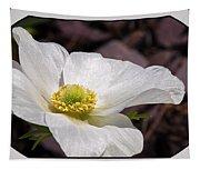 Sparkling White Anemone Tapestry