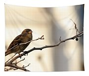 Sparrow On A Limb Tapestry