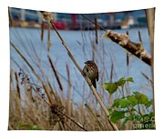 Sparrow On The Cattails Tapestry