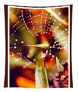 Spider And Spider Web Tapestry